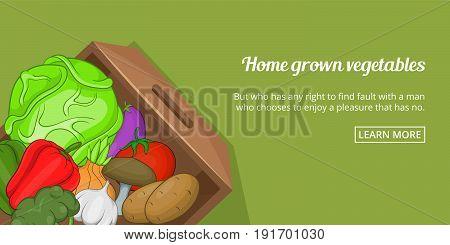 Home grown vegetables banner horizaontal concept. Cartoon illustration of home grown vegetables banner horizontal vector concept for web