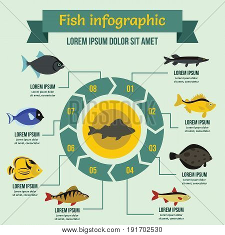 Fish infographic banner concept. Flat illustration of fish infographic vector poster concept for web