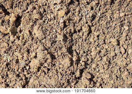 Texture is lumpy wet pit sand . The background of the industrial sand for construction works. Natural material for bricks and concrete products.