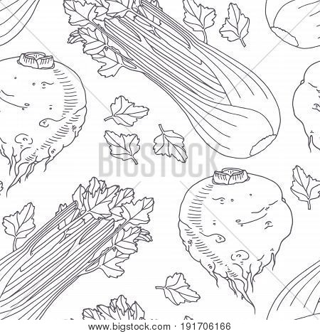 Hand drawn seamless pattern with celery. Monochrome background in sketch style. Vector illustration