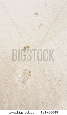 Footprints in the sand of a tropical ocean beach.  Soft white sands of Gulf Coast.  Tourist destination location for relaxation and recreation.