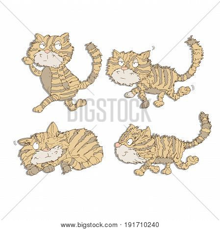 The cat to walking strips and sleeps mascot Color illustration for books and fables