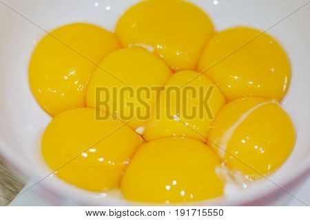 Yellow fresh egg yolks in white plate for cooking, close up view