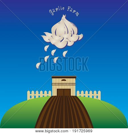 Application Garlic farm - a banner with a cloud of garlic cloves.