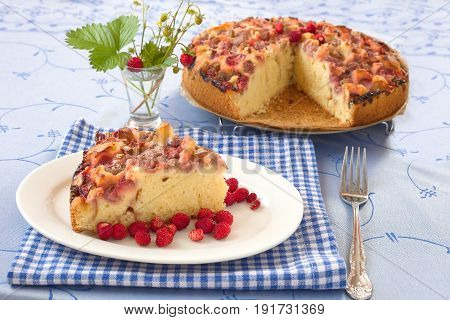Freshly baked fruit cake with strawberry and rhubarb