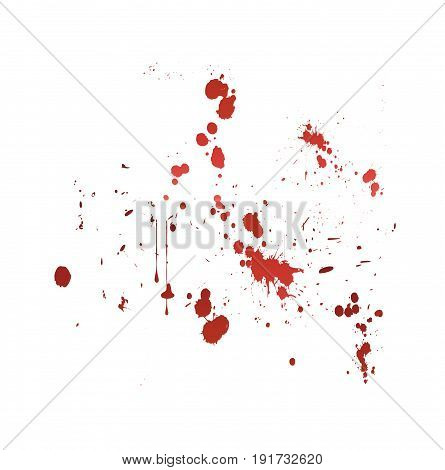blood splat vector illustration on white background