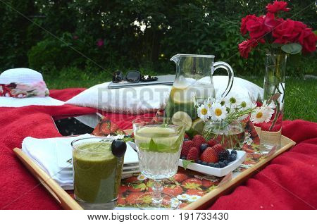 Picnic breakfast in the summer garden. Food tray of fresh berries, drinks and sweets.