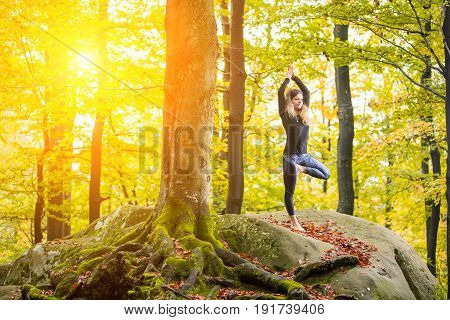 Yoga Outdoors - Sporty Fit Woman Doing Asana Vrikshasana In The Autumn Forest On The Top Of Big Boul