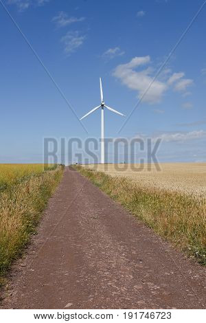 Wind turbine in wheat field under cloudy sky