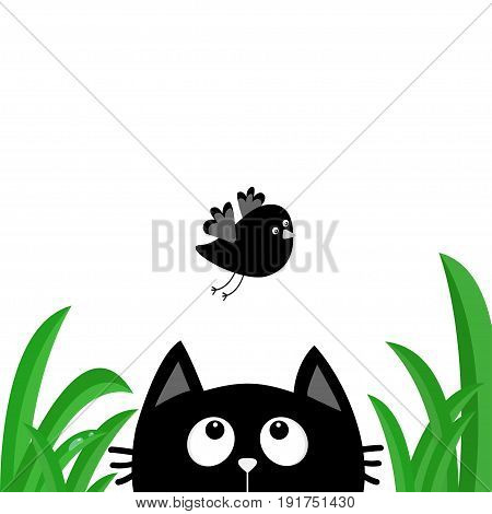 Black cat face head silhouette looking up to flying bird. Green grass dew drop. Cute cartoon character. Kawaii animal. Baby card. Pet collection. Flat design style. White background. Isolated Vector