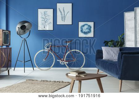 Elegant retro living room with classic bicycle