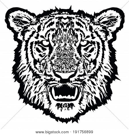 Tiger head with fangs. Black And White, isolated, vector