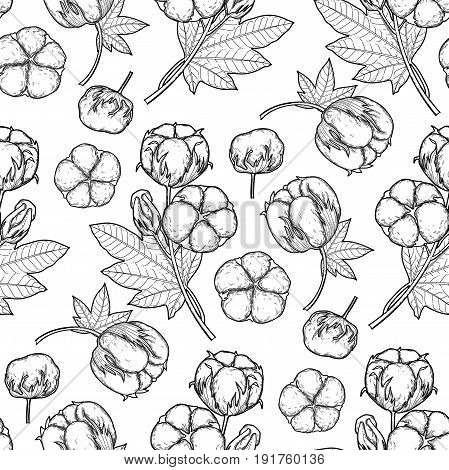 Graphic cotton plants. Vector seamless natural pattern. Coloring book page design for adults and kids