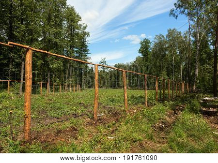 A separate and fenced area in the middle of a forest with small trees planted the forest area is battered and forbidden. Horizontal view