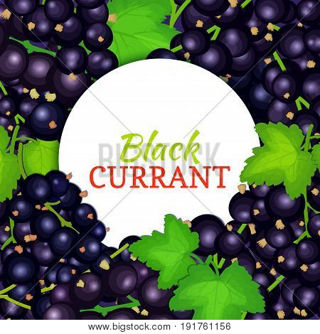 Round white label on ripe black currant background. Vector card illustration. Black berry fresh and juicy currant frame for packaging design food, juice, jam, ice cream, smoothies, detox, cosmetics cream.