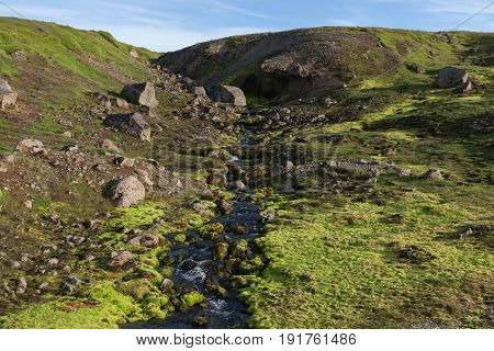 Iceland Moss Landscape. Small River Stream Running Down The Green Mossy Hill In Iceland. Bright Gree
