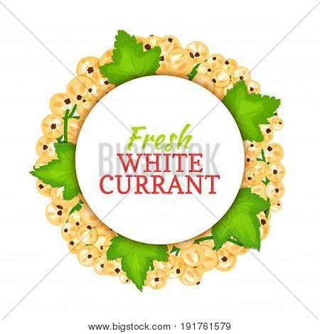 Round colored frame composed of white currant. Vector card illustration. Fruit label. Circle currant berries label fruit and leaves for packaging design of healthy food, detox, cosmetics cream, jam.