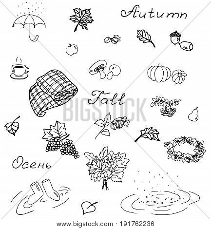 Icons set of fall vector illustration sketch
