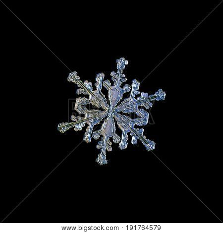 Snowflake isolated on black background. Macro photo of real snow crystal: small stellar dendrite with elegant shape, six long arms with many side branches and glossy surface.