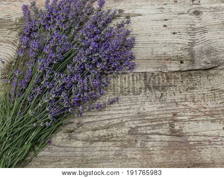 Lavender flowers over wooden table. Aroma lavender flowers border design. Aroma treatment concept