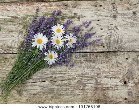 Lavender and daisy flowers over wooden table. Aroma lavender flowers border design. Aroma treatment concept