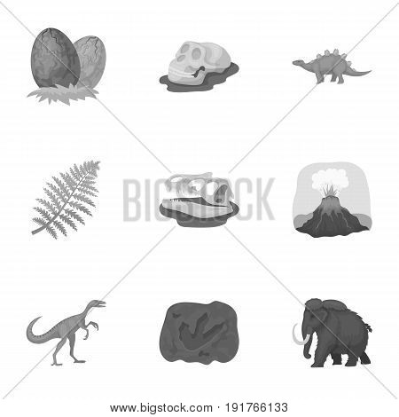 Ancient extinct animals and their tracks and remains. Dinosaurs, tyrannosaurs, pnictosaurs.Dinisaurs and prehistorical icon in set collection on monochrome style vector symbol stock web illustration.