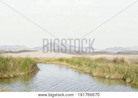 view of tecopa hot springs little pond in Mojave desert, Nenada
