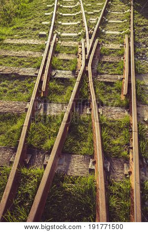 detail shot of rail track on a meadow in a park.