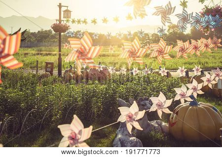 groups of flower-shape Pinwheels against sunbeams in parkChina.
