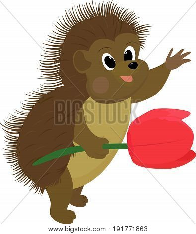 cartoon brown hedgehog with red flower isolated on white