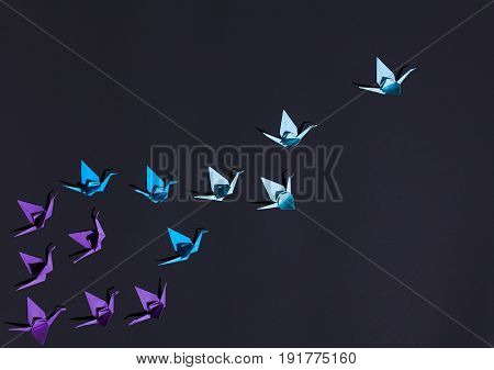 From above shot of blue origami birds in flock on dark blue surface.