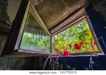 House in abandoned military town called Chernobyl-2 in Chernobyl Exclusion Zone Ukraine