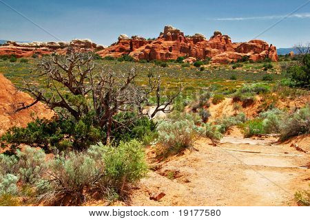Landscape of Utah state. Arches Canyon. USA poster