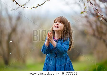A little girl in a blue dress folded her hands in prayer standing in the midst of a flowering apricot garden poster