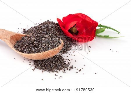 Poppy seeds in a wooden spoon with a flower.