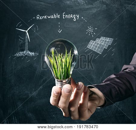 Renewable energy concept. Hand holds a light bulb with green grass inside on chalkboard background. On the board are painted a windmill and solar panels.