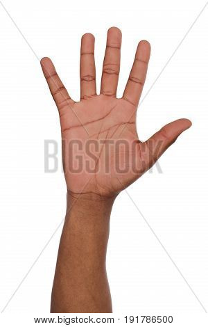 Black hand shows number five isolated. Counting gesturing, enumeration, white background