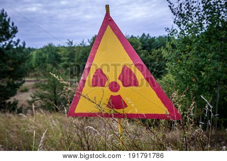 Close up on radiation sign in Red Forest near power plant in Chernobyl Exclusion Zone Ukraine