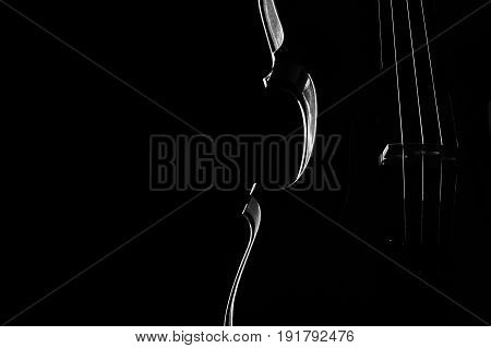 Violin classical music instrument close-up. Stringed musical instrument violin isolated on black background with copy space. Classical orchestra instruments fiddle close up