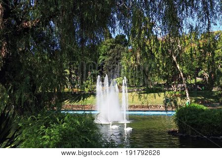 A wonderful sunny day in the park. The fountain in the lake and a pair of white swans