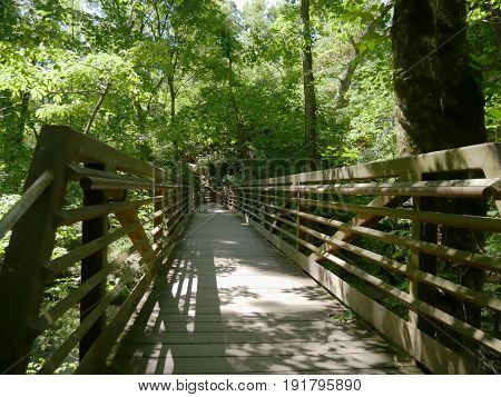 A beautiful wooden bridge set in the jungle connecting to Natural Falls State Park, Oklahoma