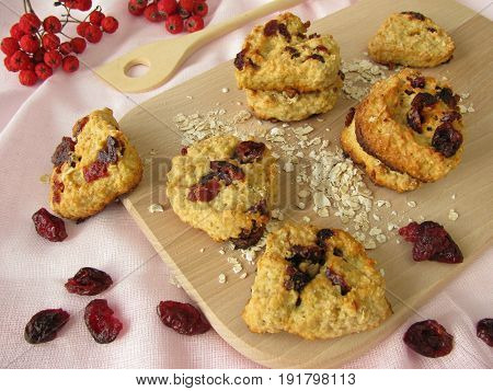 Homemade rolled oats cookies with dried cranberries