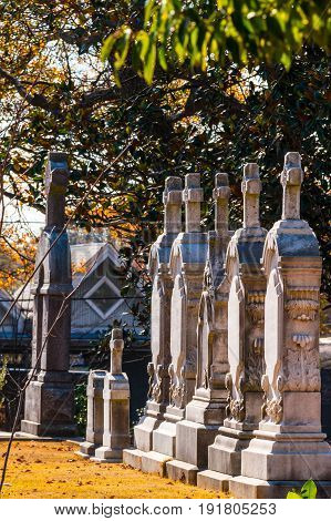 Several tombstones in the row under the tree on the Oakland Cemetery in sunny day Atlanta USA