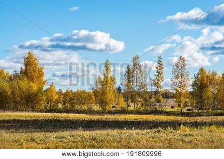 Beautiful autumn landscape. Fields in the village with trees and hay. The sky with lush clouds. Saturated colors, colorful look.