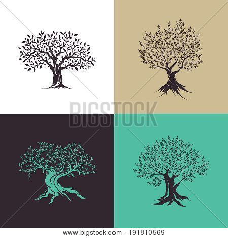 Beautiful magnificent olive tree silhouette isolated on color background. Modern virgin natural plant vector sign. Premium quality illustration organic ecological logo design concept emblem set.