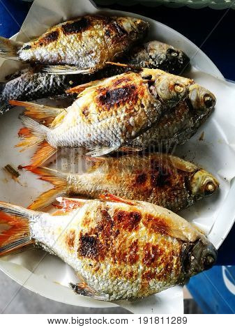 Grilled Red Snapper Fish With Salt