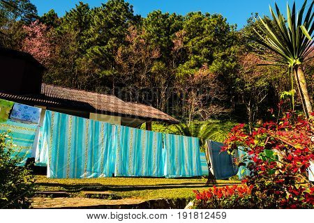 Thai rural lifestyle Dry counterpanes and blankets and clothes by the sun
