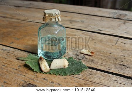 Cosmetic oil burdock with burdock root against background of boards