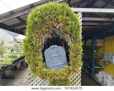metal mailbox inside a hole in green tree