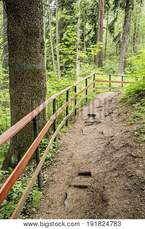 Path in the summer forest park is enclosed by a barrier to security.